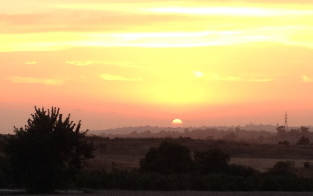 Santaluz Sunset II 2nd